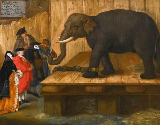 Elefante, Pietro Longhi, 1774. O feito de que aínda esté en mans privadas o cadro suxire un magnetismo aínda non perdido ?