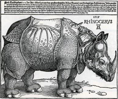 Rhinoceros, Albrecht Dürer, 1515. Inspirado nas coleccións de animais exóticos que Ennmanuel de Portugal trouxera da India e que dera en agasallo a León X. O rinoceronte morreu no camiño a Roma mais Dürer conseguiu transmitir con similitude as súas formas.