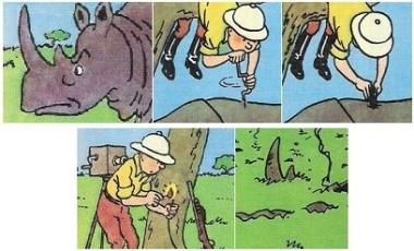 Tintin-in-the-Congo